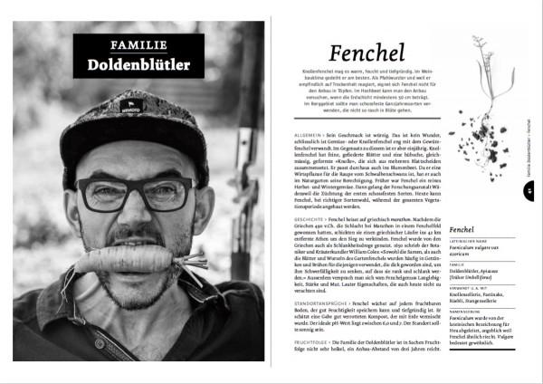 Ausführliche Kulturbeschriebe für die wichtigsten Gemüsearten, hier von Fenchel, bilden das Herzstück vom Handbuch Spriessbürger