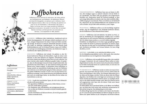 Ausführliche Kulturbeschriebe für die wichtigsten Gemüsearten, hier von Puffbohnen, bilden das Herzstück vom Handbuch Spriessbürger